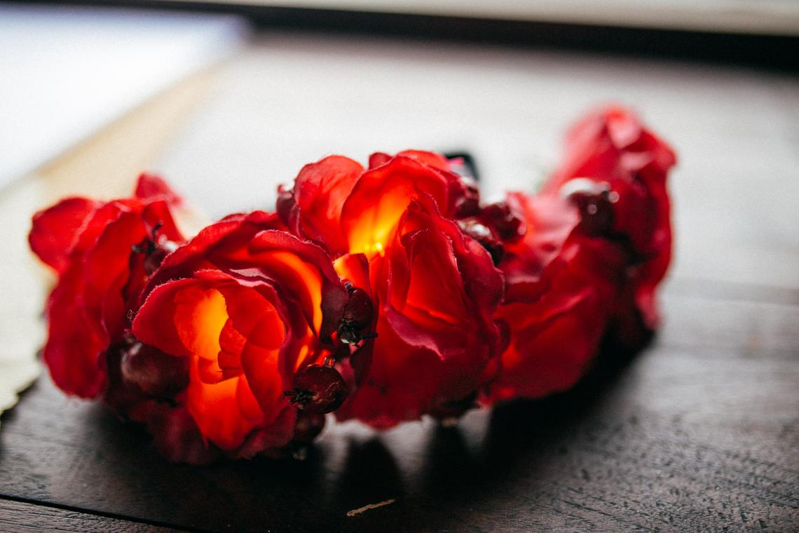 Illuminated red roses flower